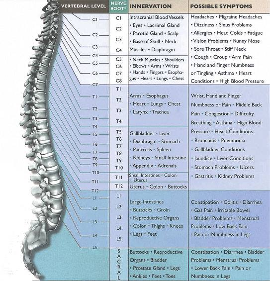 spine-affected