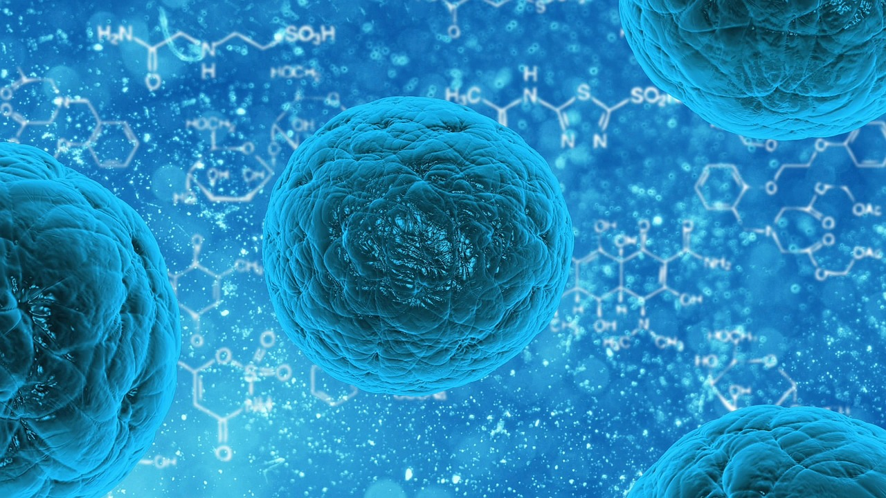 7 Questions About Stem Cell Therapy Answered